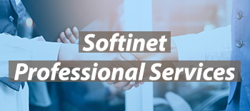 Softinet Professional Services